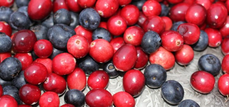 Images Of Blueberries And Cranberries